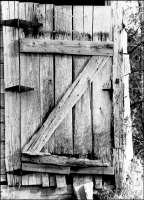 Shed Door -- 10.74