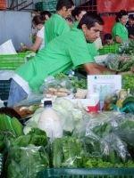 man-in-green
